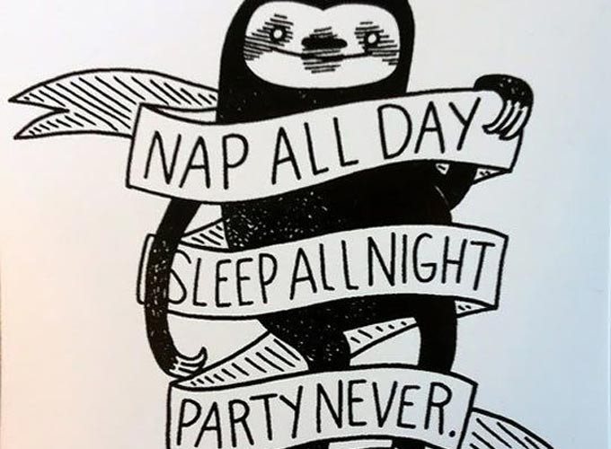 nap all day sleep all night party never sloth